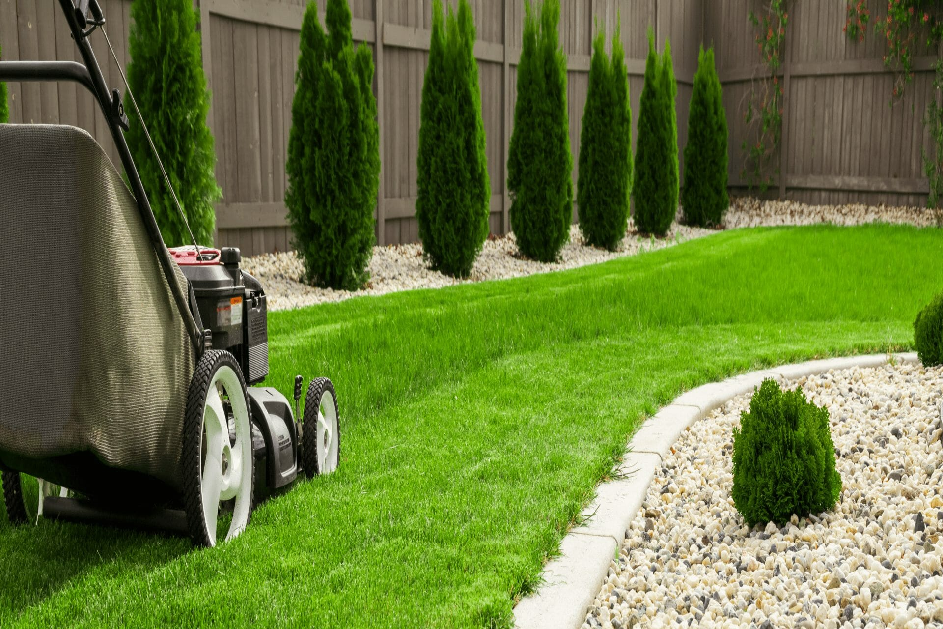 czystosc kosiarki do trawy
